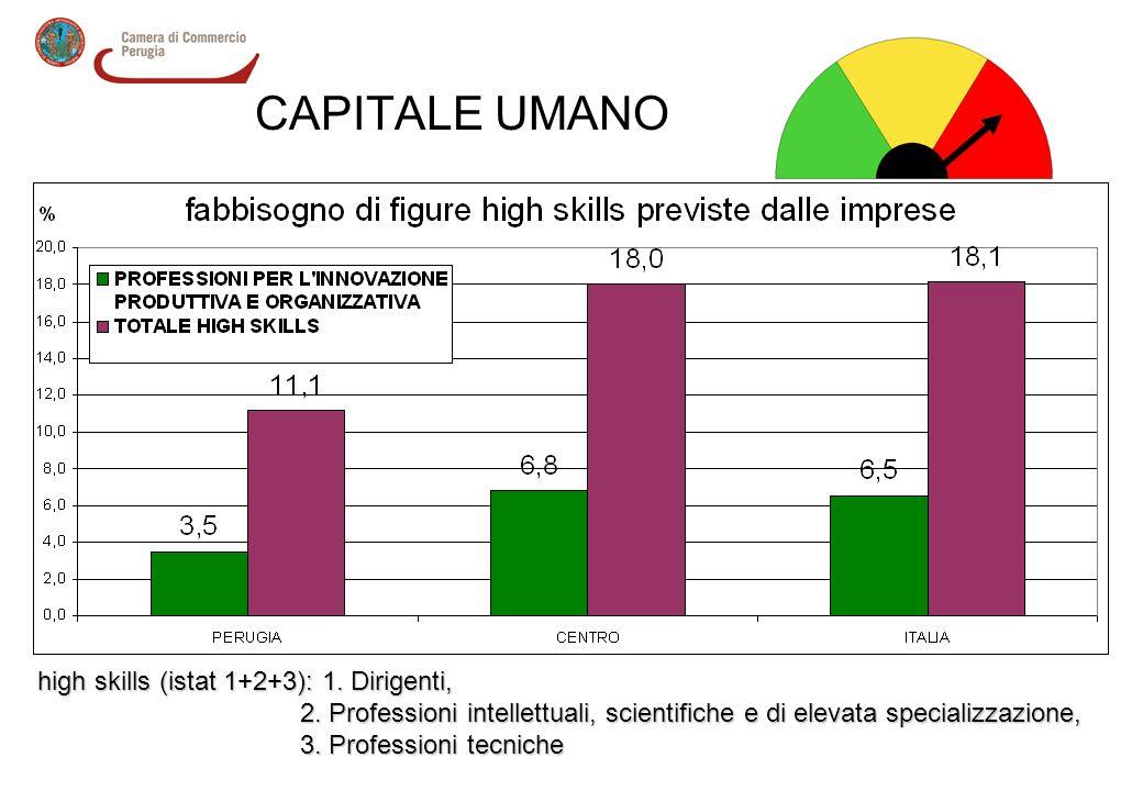 CAPITALE UMANO high skills (istat 1+2+3): 1. Dirigenti, 2. Professioni intellettuali, scientifiche e di elevata specializzazione, 2. Professioni intel
