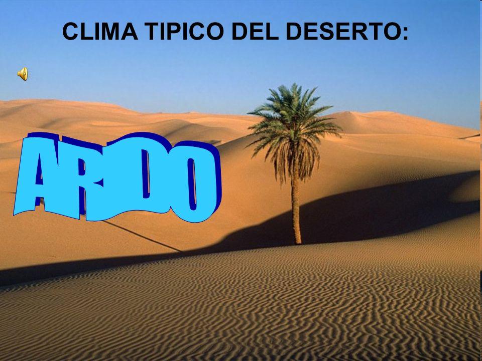 Un clima arido con precipitazioni annue inferiori a 25 cm è caratteristico della zone desertiche.