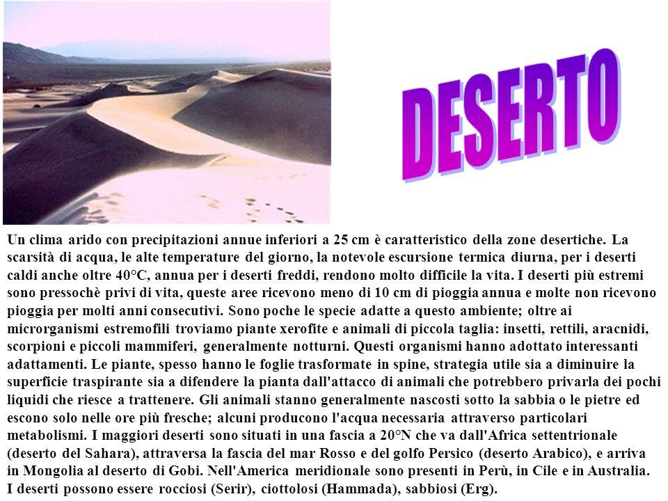 Un clima arido con precipitazioni annue inferiori a 25 cm è caratteristico della zone desertiche. La scarsità di acqua, le alte temperature del giorno