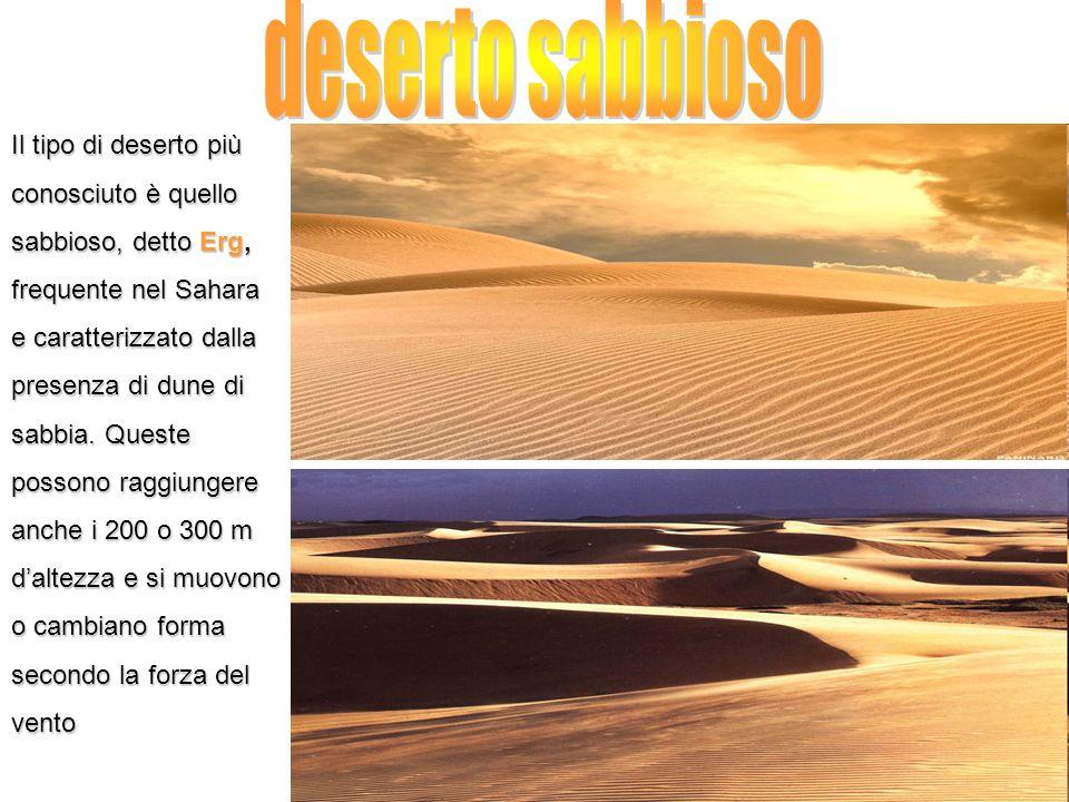 Il tipo di deserto più conosciuto è quello sabbioso, detto Erg, frequente nel Sahara e caratterizzato dalla presenza di dune di sabbia. Queste possono