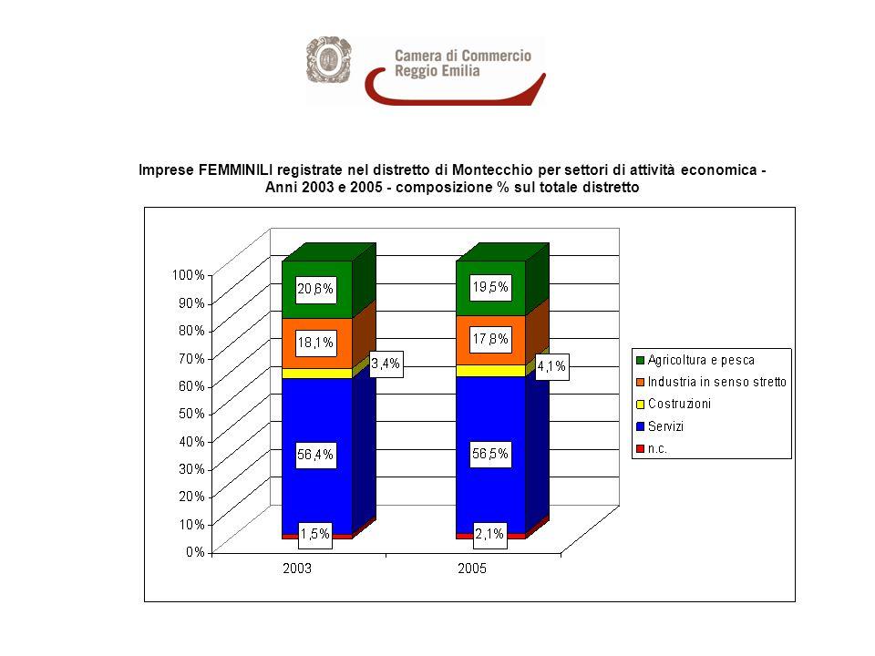 Imprese FEMMINILI registrate nel distretto di Montecchio per settori di attività economica - Anni 2003 e 2005 - composizione % sul totale distretto