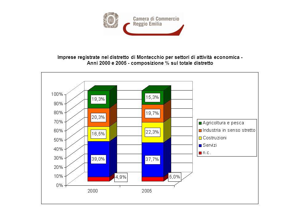 Imprese ARTIGIANE registrate nel distretto di Montecchio per settori di attività economica - Anni 2000 e 2005 - composizione % sul totale distretto