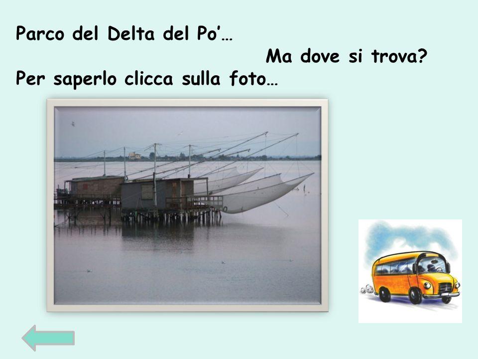 Parco del Delta del Po… Ma dove si trova Per saperlo clicca sulla foto…