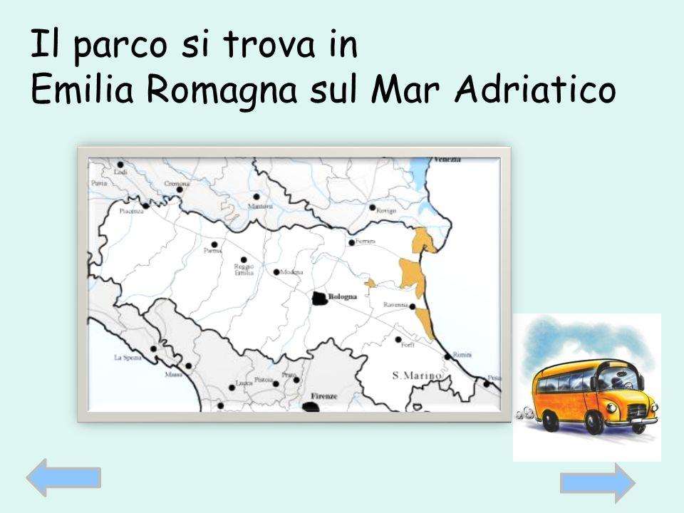 Il parco si trova in Emilia Romagna sul Mar Adriatico