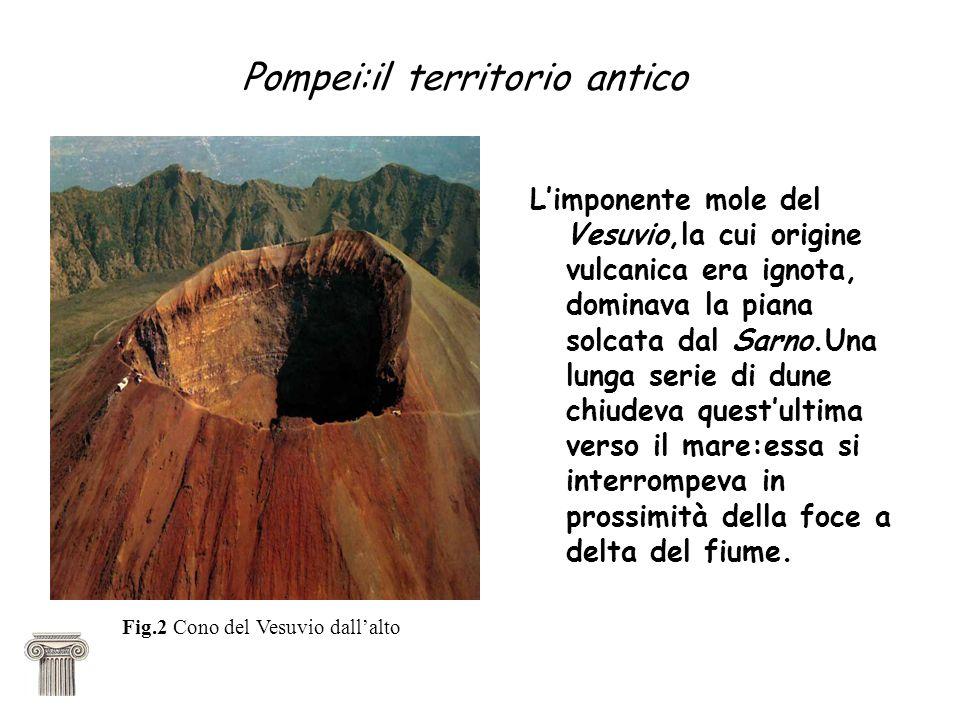 Pompei:il territorio antico Limponente mole del Vesuvio,la cui origine vulcanica era ignota, dominava la piana solcata dal Sarno.Una lunga serie di dune chiudeva questultima verso il mare:essa si interrompeva in prossimità della foce a delta del fiume.
