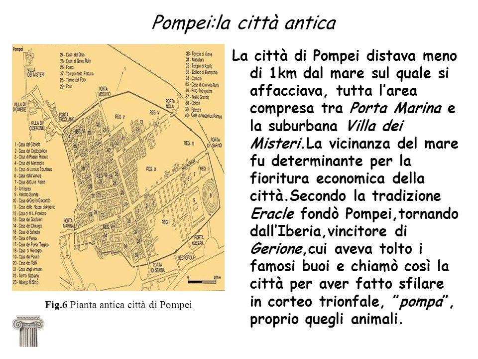 Pompei:la città antica La città di Pompei distava meno di 1km dal mare sul quale si affacciava, tutta larea compresa tra Porta Marina e la suburbana V