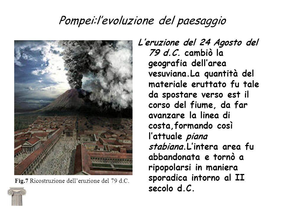 Pompei:levoluzione del paesaggio Leruzione del 24 Agosto del 79 d.C. cambiò la geografia dellarea vesuviana.La quantità del materiale eruttato fu tale
