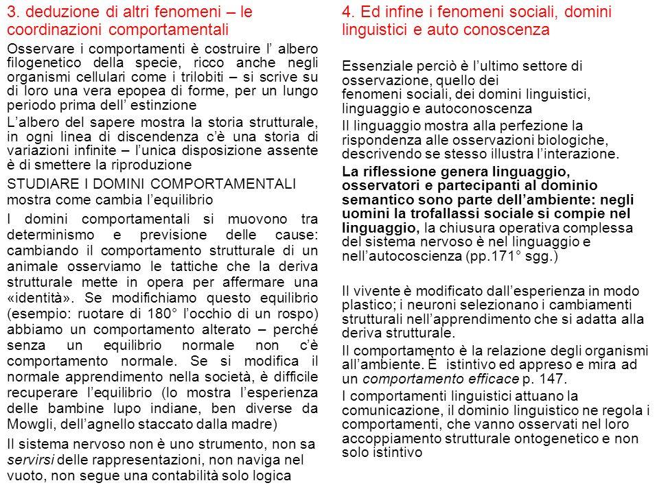 4. Ed infine i fenomeni sociali, domini linguistici e auto conoscenza Essenziale perciò è lultimo settore di osservazione, quello dei fenomeni sociali