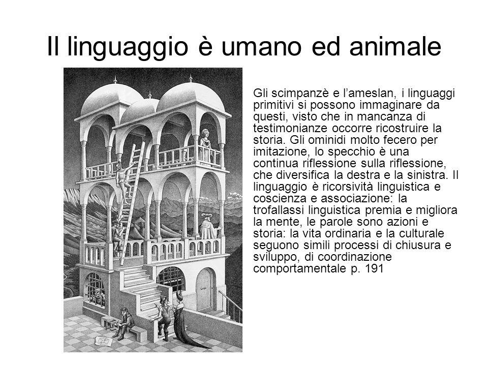 Il linguaggio è umano ed animale Gli scimpanzè e lameslan, i linguaggi primitivi si possono immaginare da questi, visto che in mancanza di testimonian
