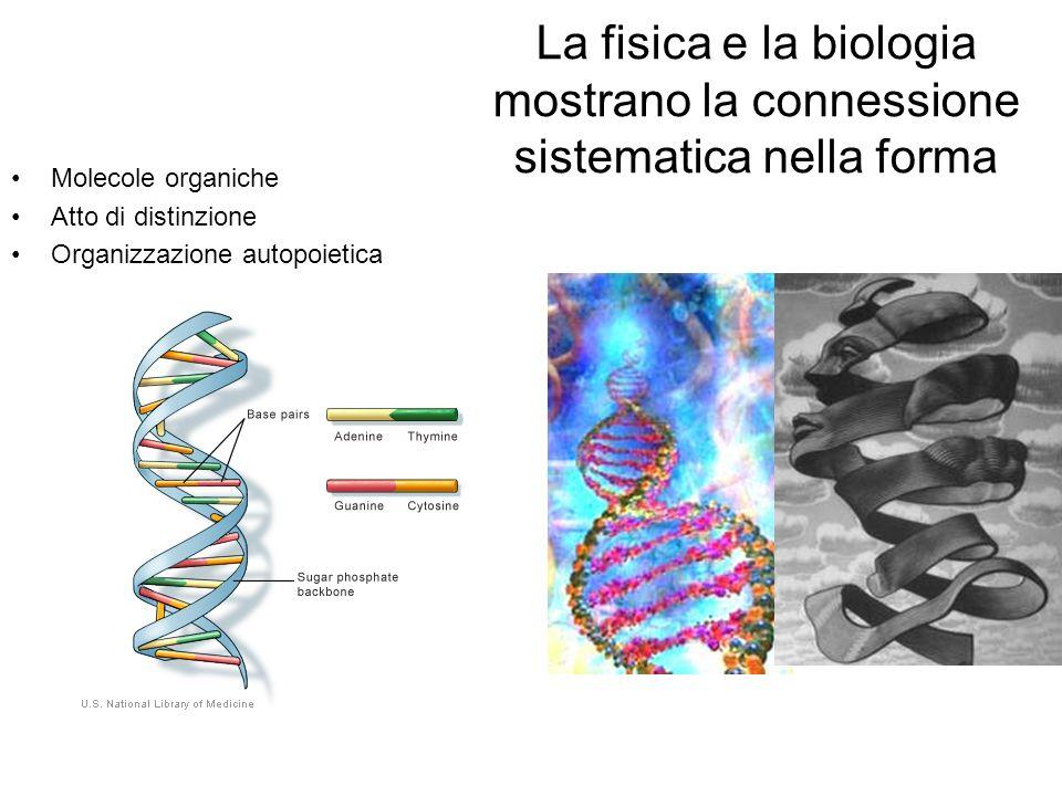 La fisica e la biologia mostrano la connessione sistematica nella forma Molecole organiche Atto di distinzione Organizzazione autopoietica