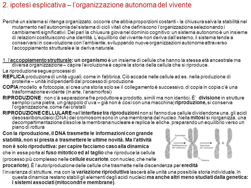 2. ipotesi esplicativa – lorganizzazione autonoma del vivente Perché un sistema si ritenga organizzato, occorre che abbia proporzioni costanti - la ch