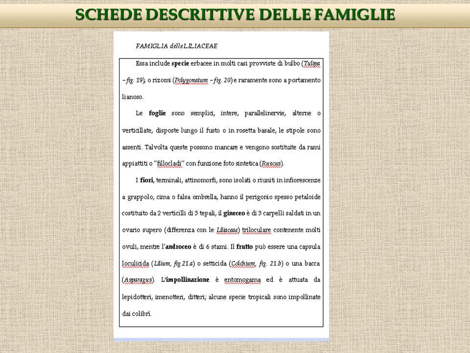 SCHEDE DESCRITTIVE DELLE FAMIGLIE