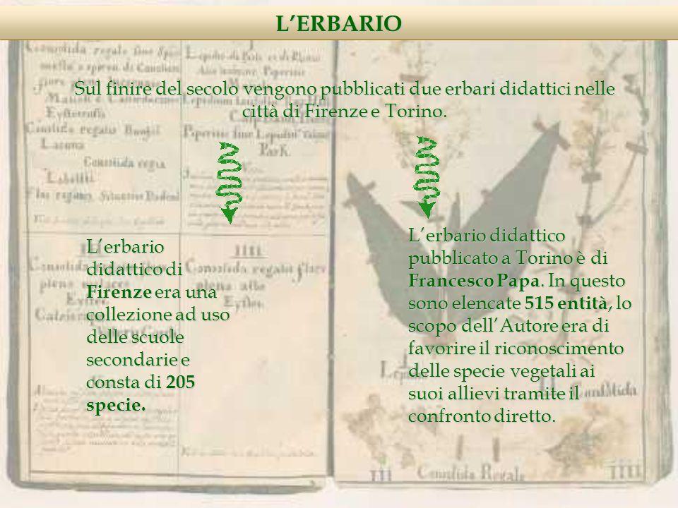 LERBARIO Sul finire del secolo vengono pubblicati due erbari didattici nelle città di Firenze e Torino.