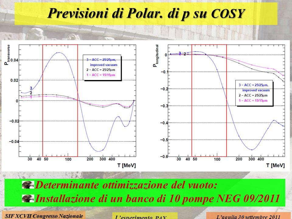 Lesperimento PAX Laquila 30 settembre 2011 SIF XCVII Congresso Nazionale Previsioni di Polar. di p su COSY Determinante ottimizzazione del vuoto: Inst