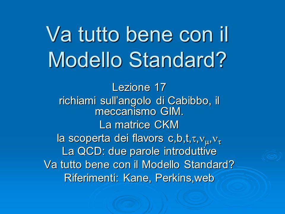 Va tutto bene con il Modello Standard? Lezione 17 richiami sullangolo di Cabibbo, il meccanismo GIM. La matrice CKM la scoperta dei flavors c,b,t,,, l