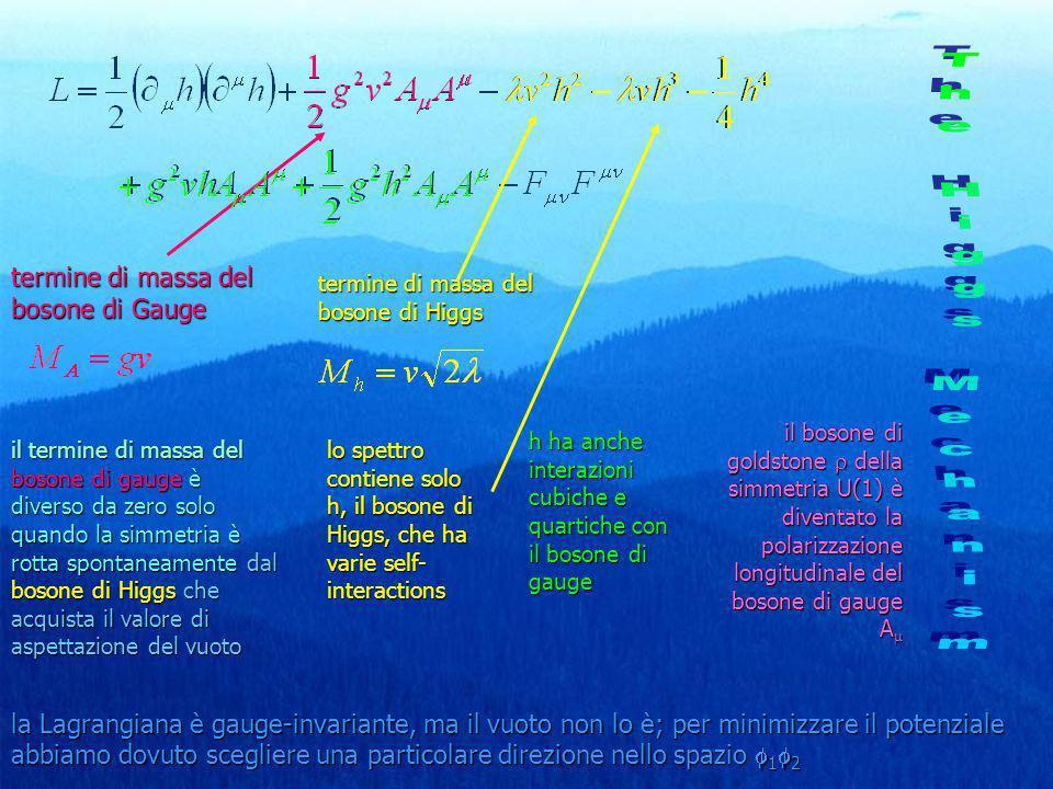 termine di massa del bosone di Gauge il termine di massa del bosone di gauge è diverso da zero solo quando la simmetria è rotta spontaneamente dal bos