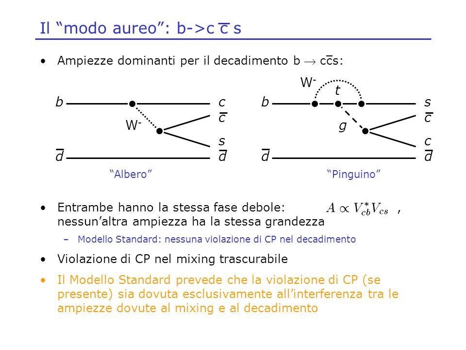 Ampiezze dominanti per il decadimento b ccs: Entrambe hanno la stessa fase debole:, nessunaltra ampiezza ha la stessa grandezza –Modello Standard: nes