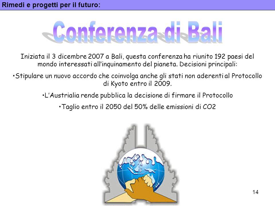 14 Rimedi e progetti per il futuro: Iniziata il 3 dicembre 2007 a Bali, questa conferenza ha riunito 192 paesi del mondo interessati allinquinamento d