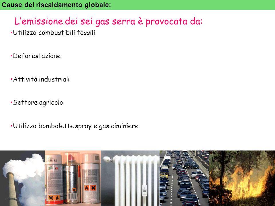 5 Cause del riscaldamento globale: Utilizzo combustibili fossili Deforestazione Attività industriali Settore agricolo Utilizzo bombolette spray e gas