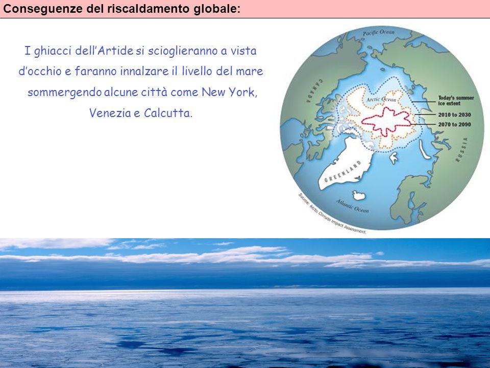 7 Conseguenze del riscaldamento globale: I ghiacci dellArtide si scioglieranno a vista docchio e faranno innalzare il livello del mare sommergendo alc