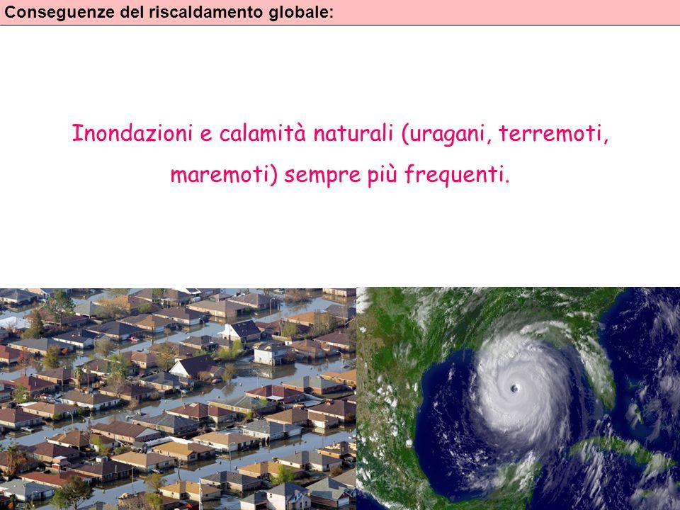 9 Conseguenze del riscaldamento globale: Inondazioni e calamità naturali (uragani, terremoti, maremoti) sempre più frequenti.