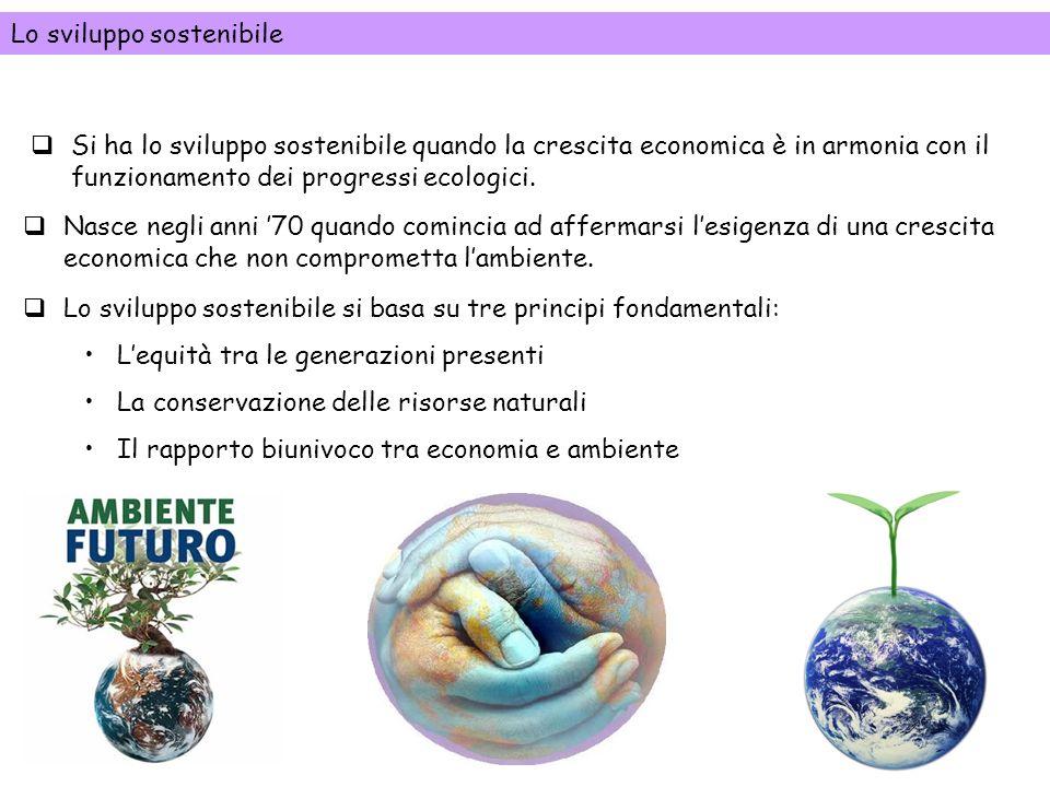 Si ha lo sviluppo sostenibile quando la crescita economica è in armonia con il funzionamento dei progressi ecologici. Nasce negli anni 70 quando comin