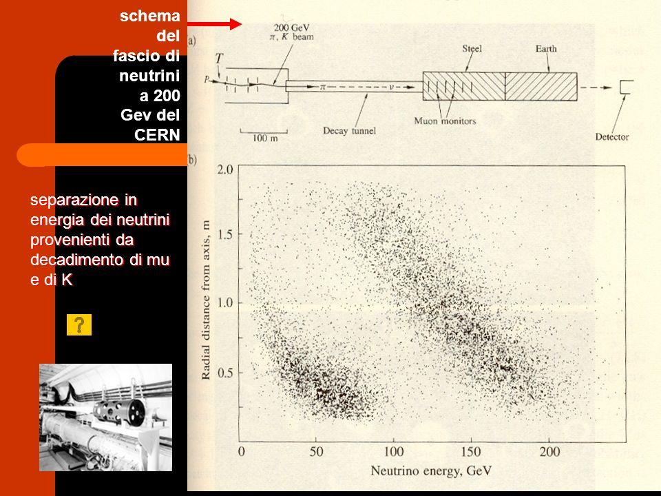schema del fascio di neutrini a 200 Gev del CERN separazione in energia dei neutrini provenienti da decadimento di mu e di K