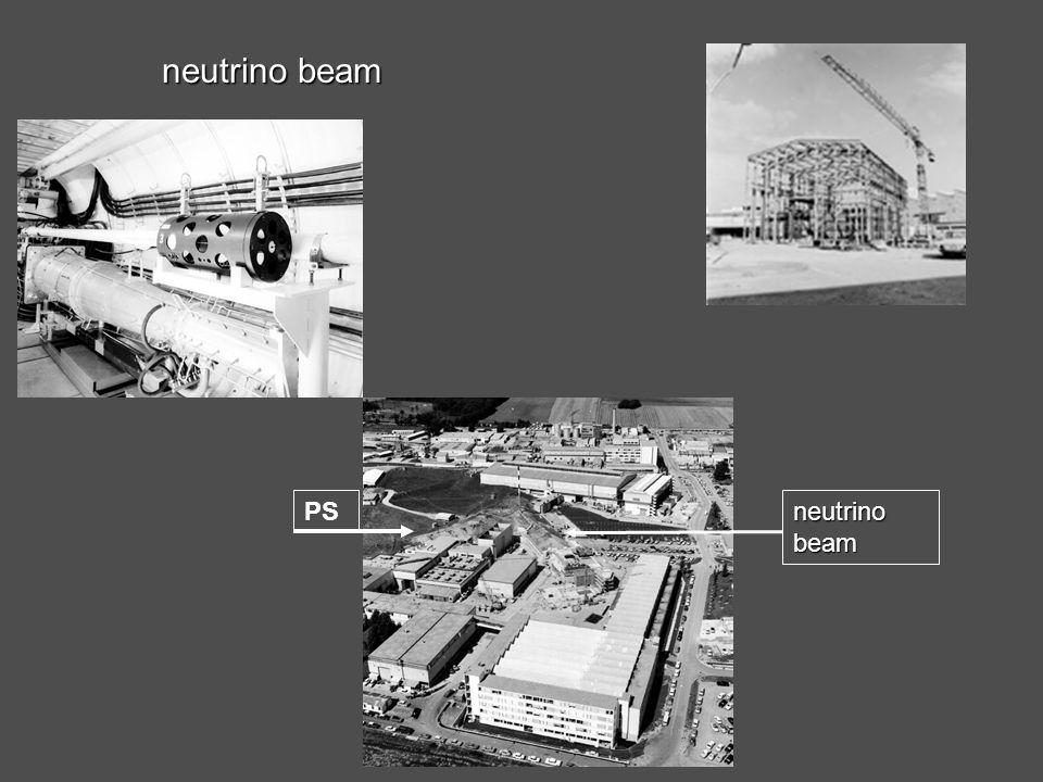 La scoperta delle correnti neutre: gargamelle Ecole Polytechniques, Parigi gargamelle (circa 1000 tonnellate di rame e acciaio) camera a bolle al freon realizzata in 6 anni