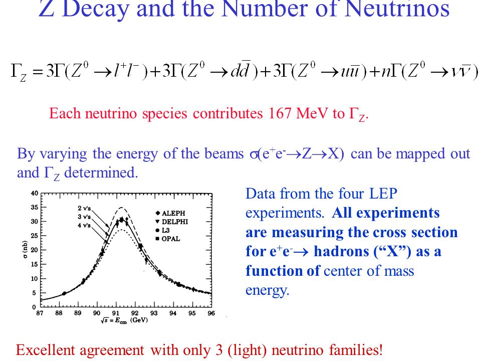 Z Decay and the Number of Neutrinos Each neutrino species contributes 167 MeV to Z. By varying the energy of the beams (e + e - Z X) can be mapped out