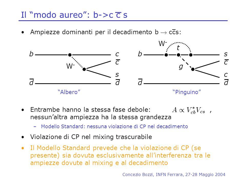 Concezio Bozzi, INFN Ferrara, 27-28 Maggio 2004 Ampiezze dominanti per il decadimento b ccs: Entrambe hanno la stessa fase debole:, nessunaltra ampiez