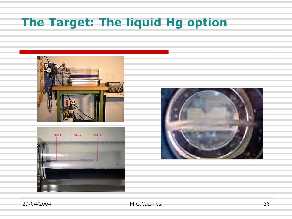 29/04/2004M.G.Catanesi38 The Target: The liquid Hg option