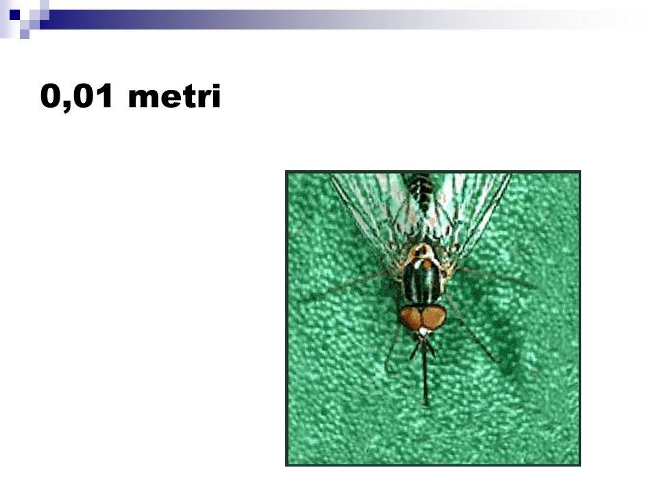 0,01 metri