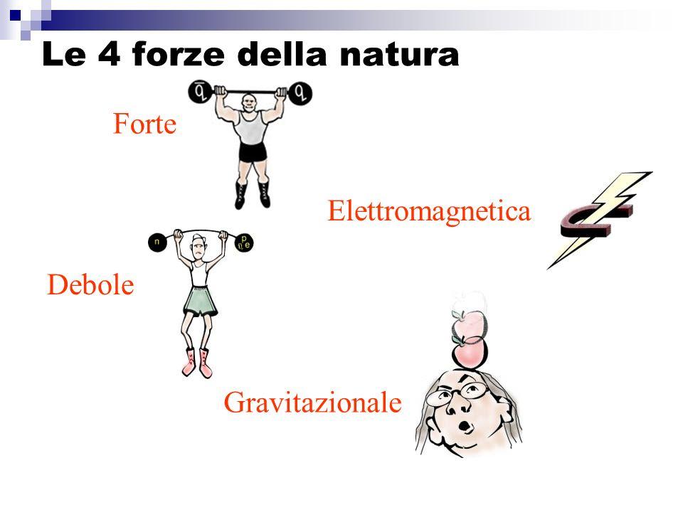 Le 4 forze della natura Forte Elettromagnetica Debole Gravitazionale