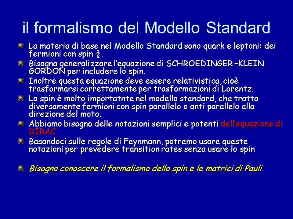 il formalismo del Modello Standard La materia di base nel Modello Standard sono quark e leptoni: dei fermioni con spin ½. Bisogna generalizzare lequaz