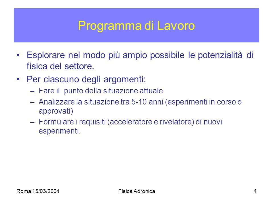 Roma 15/03/2004Fisica Adronica4 Programma di Lavoro Esplorare nel modo più ampio possibile le potenzialità di fisica del settore.