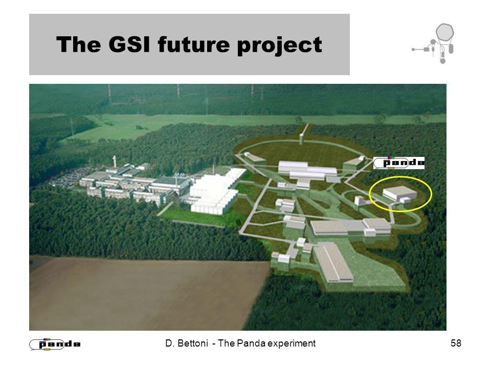 D. Bettoni - The Panda experiment 58 The GSI future project