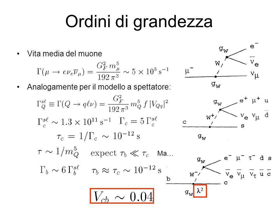 Effetti fini Differenze ~10% Scala: Differenze maggiori b c u, du, d W -W - d u u, du, d b u W -W - B-B- weak annihilation b d c W -W - u B0B0 W exchange b u c u B-B- W -W - u b u c u u d B-B- Pauli interference (color suppressed) Spettatore (ordine zero)