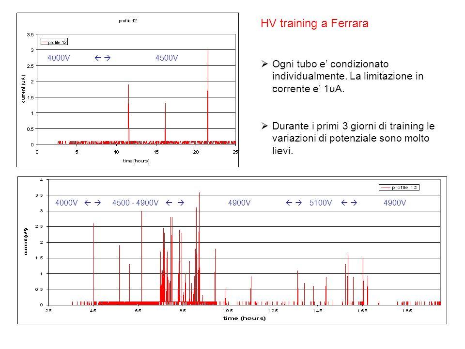 HV training a Ferrara Ogni tubo e condizionato individualmente. La limitazione in corrente e 1uA. Durante i primi 3 giorni di training le variazioni d