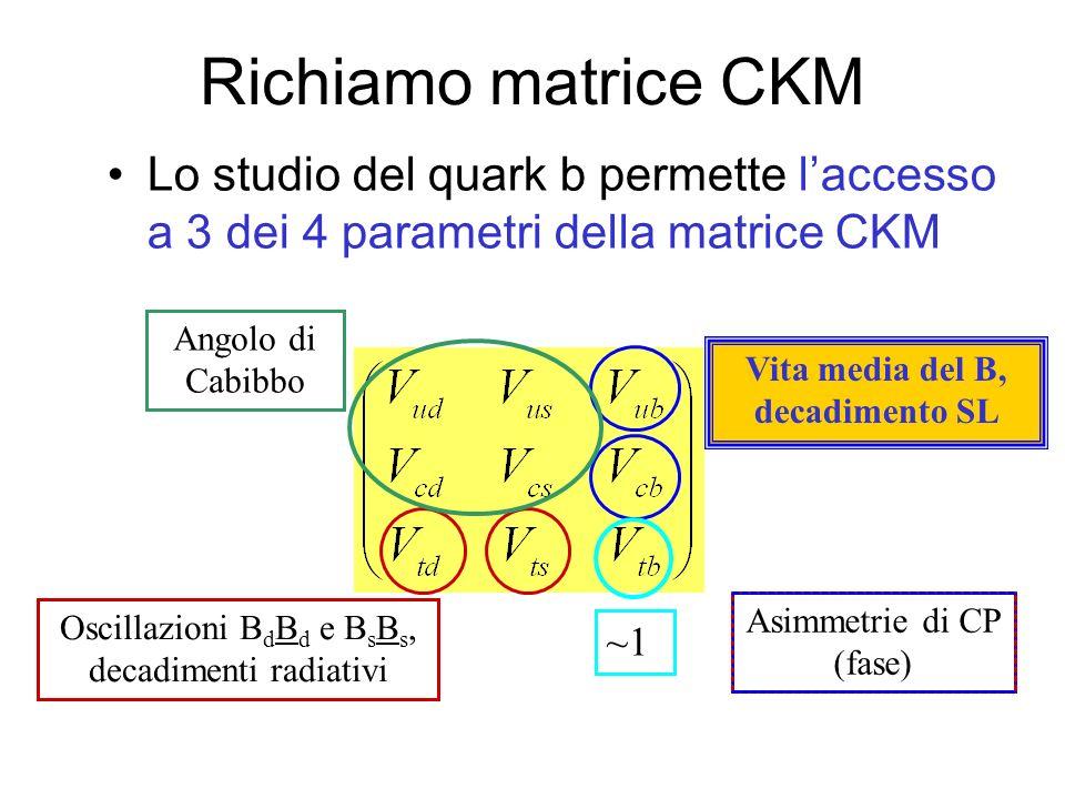 Richiamo matrice CKM Lo studio del quark b permette laccesso a 3 dei 4 parametri della matrice CKM Angolo di Cabibbo Oscillazioni B d B d e B s B s, decadimenti radiativi Vita media del B, decadimento SL ~1 Asimmetrie di CP (fase)