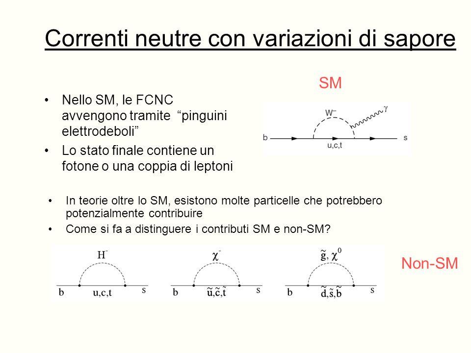 Correnti neutre con variazioni di sapore Nello SM, le FCNC avvengono tramite pinguini elettrodeboli Lo stato finale contiene un fotone o una coppia di leptoni In teorie oltre lo SM, esistono molte particelle che potrebbero potenzialmente contribuire Come si fa a distinguere i contributi SM e non-SM.