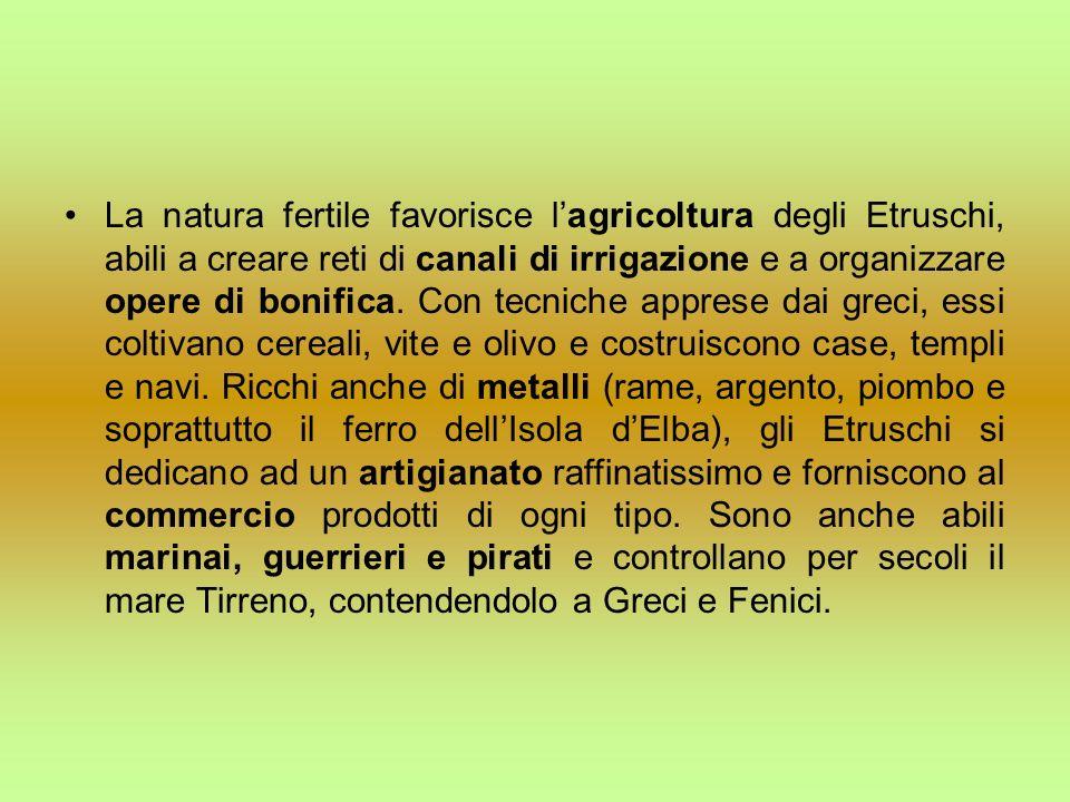 La natura fertile favorisce lagricoltura degli Etruschi, abili a creare reti di canali di irrigazione e a organizzare opere di bonifica. Con tecniche