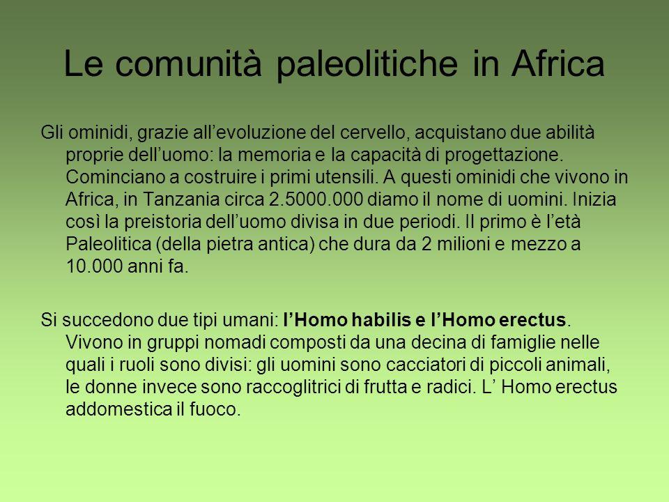 Le comunità paleolitiche in Africa Gli ominidi, grazie allevoluzione del cervello, acquistano due abilità proprie delluomo: la memoria e la capacità d