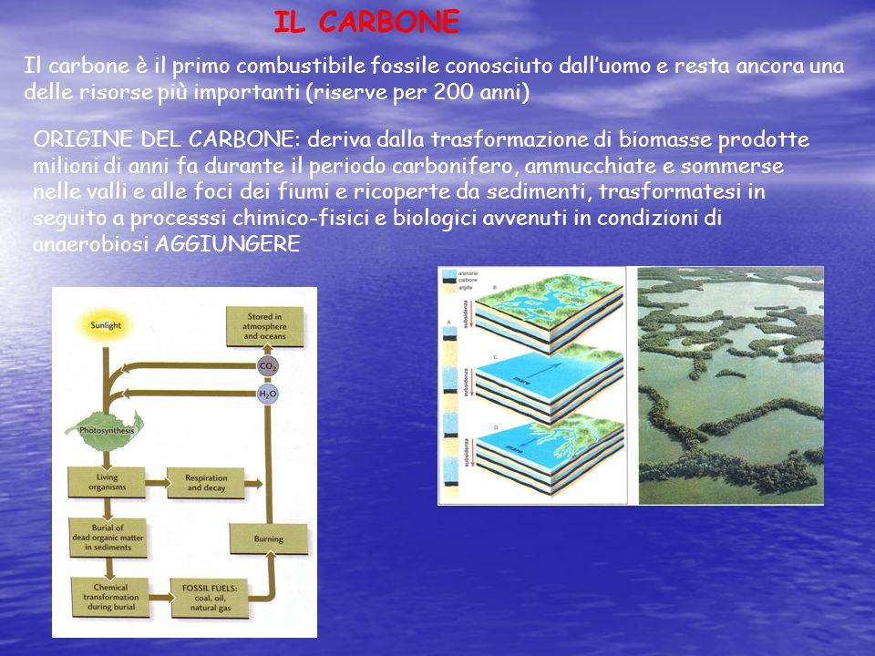 ORIGINE DEL CARBONE: deriva dalla trasformazione di biomasse prodotte milioni di anni fa durante il periodo carbonifero, ammucchiate e sommerse nelle