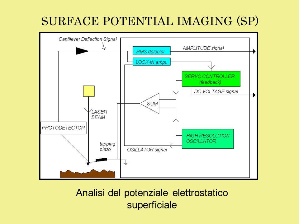 ESEMPI DI APPLICAZIONI Rilevazione di buche di potenziale, non visibili in unimmagine topografica Individuazione ed analisi dei difetti nei dispositivi elettronici TOPOGRAPHYSP TOPOGRAPHYEFM