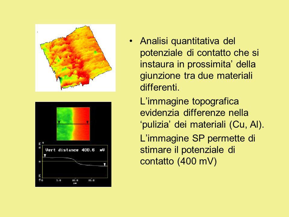 Analisi quantitativa del potenziale di contatto che si instaura in prossimita della giunzione tra due materiali differenti. Limmagine topografica evid