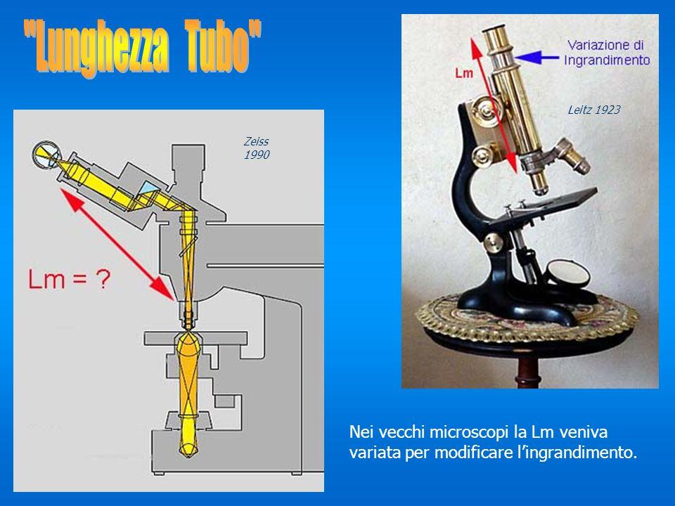 Nei vecchi microscopi la Lm veniva variata per modificare lingrandimento. Zeiss 1990 Leitz 1923
