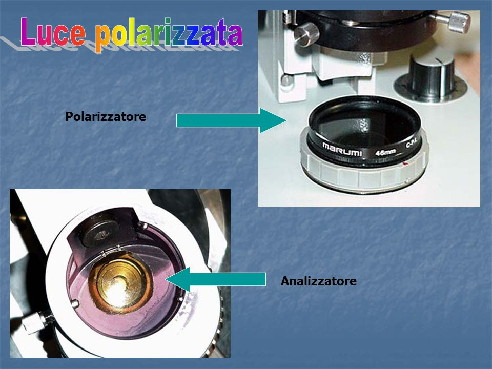 Polarizzatore Analizzatore