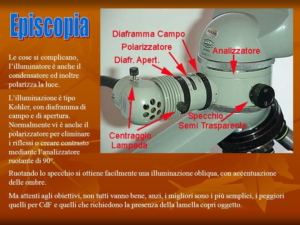 Le cose si complicano, lilluminatore è anche il condensatore ed inoltre polarizza la luce.