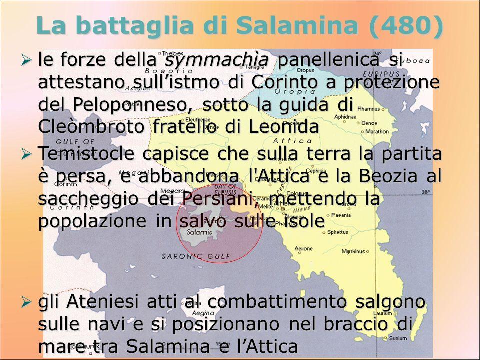 La battaglia di Salamina (480) le forze della symmachìa panellenica si attestano sullistmo di Corinto a protezione del Peloponneso, sotto la guida di