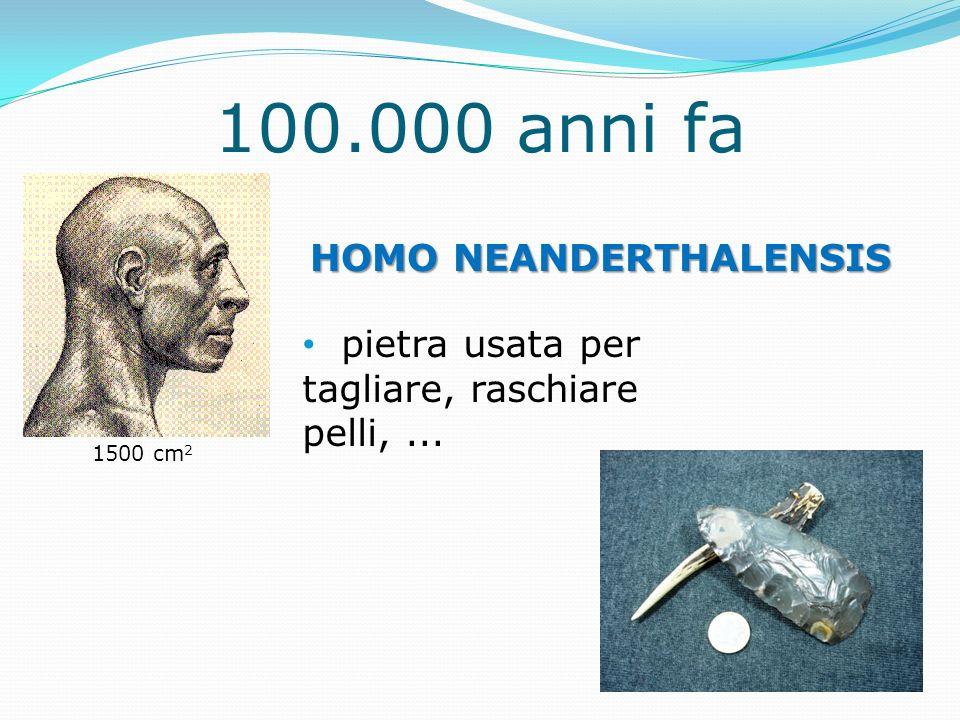100.000 anni fa HOMO NEANDERTHALENSIS pietra usata per tagliare, raschiare pelli,... 1500 cm 2